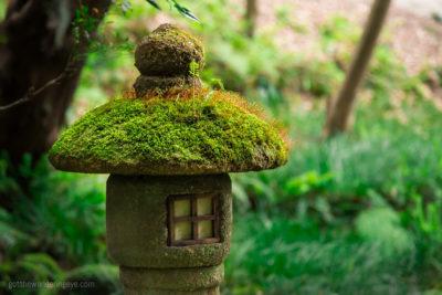 Garden Lantern, Japan