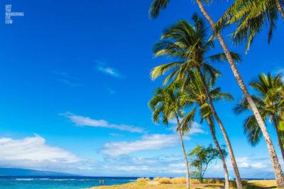 Island Life, Hawaii