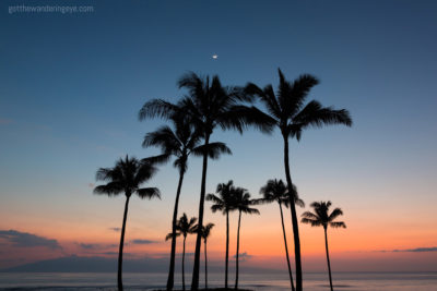 Maui Nights, Hawaii