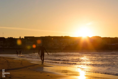 Sun Spots, Bondi Beach