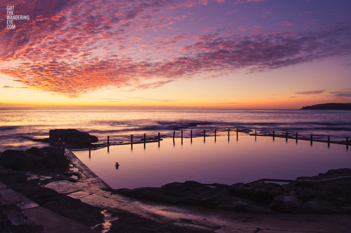 A lone swimmer witnessing a gorgeous pink sky sunrise over Mahon Pool, Maroubra