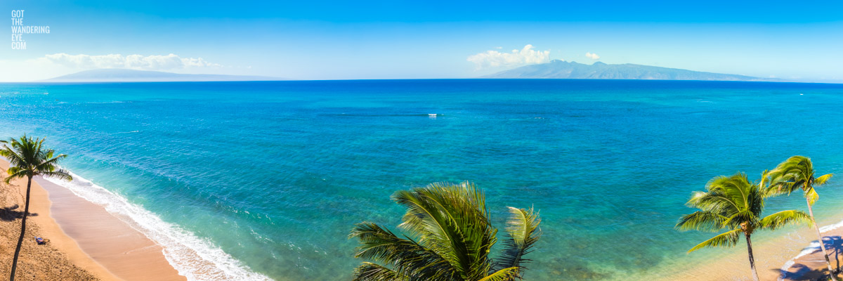 Aerial oceanscape panorama overlooking palm trees on Maui Island