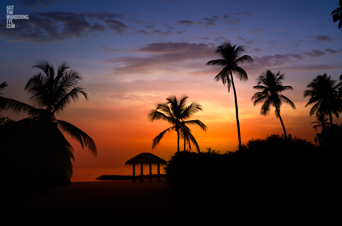 Purple and orange sunset sky with black silhouette palm trees in the Maldives