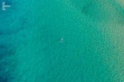 Aerial photograph of couple of swimmers swimming in the clear ocean waters of Bondi Beach, Sydney