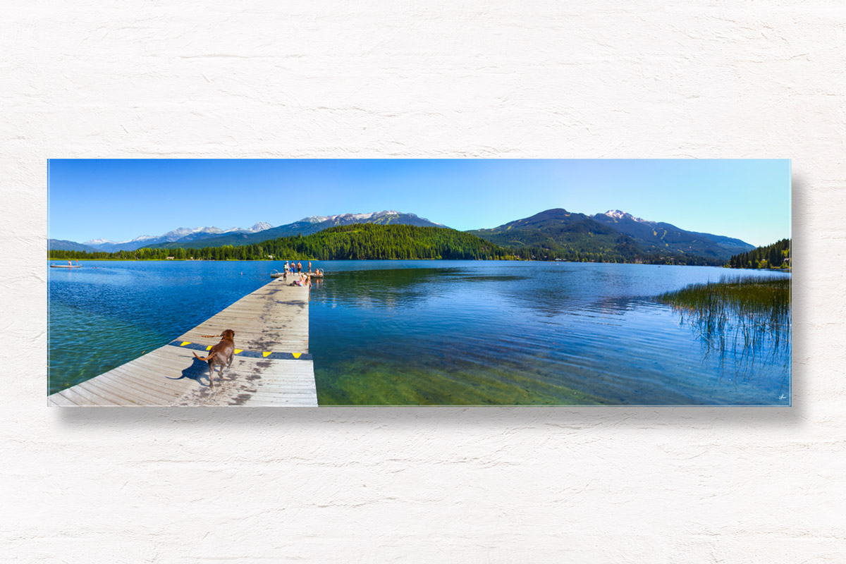 Dog with stick in front of panoramic view of Alta Lake in Whistler, Canada