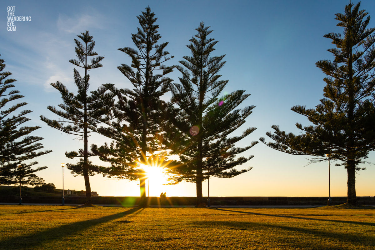 A couple enjoying a beautiful sunrise and morning walk along Coogee Beach