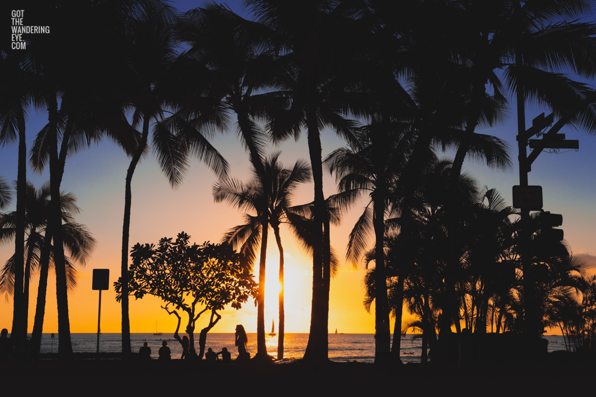 Sunset and silhouette of palm trees and woman walking along Waikiki Beach, Hawaii