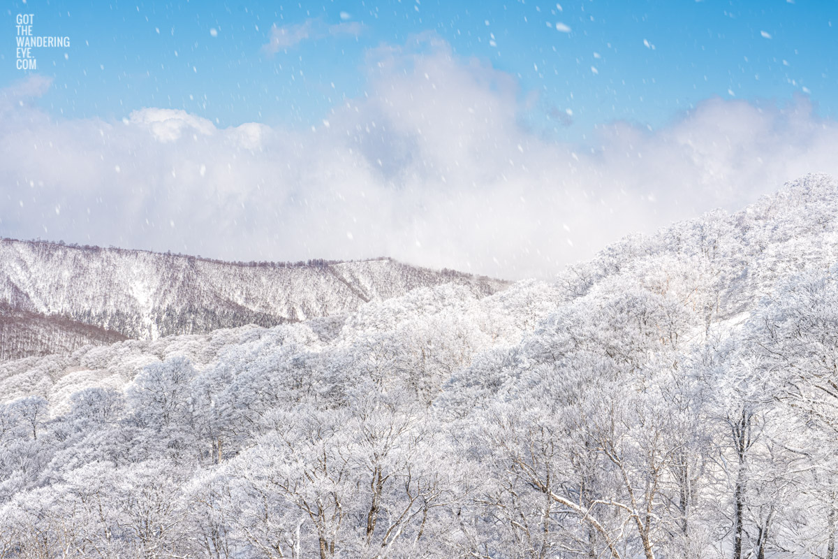 Snowing ontop of Nozawa Onsen Snow resort, Japan