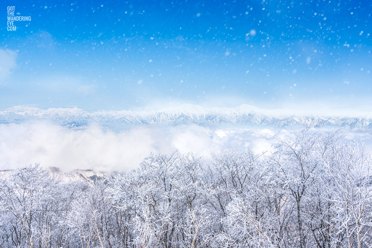 Mountains appearing above a sea of clouds and snowy trees in Nozawa Onsen, Japan