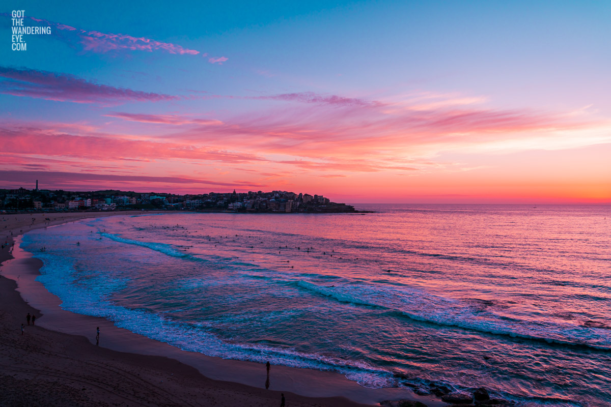 Aerial seascape of a gorgeous pink sky sunrise over Ben Buckler Bondi Beach