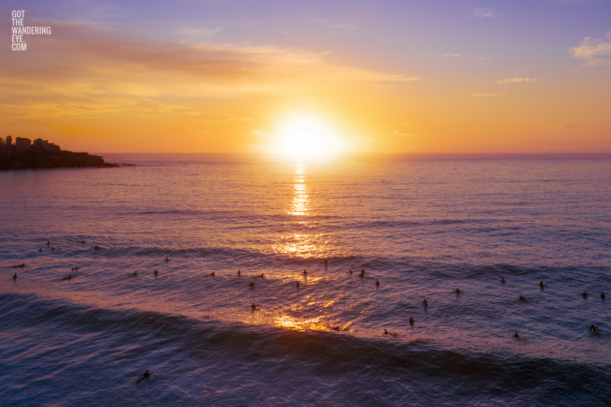 Aerial seascape of surfers experiencing a gorgeous golden sky sunrise over Bondi Beach