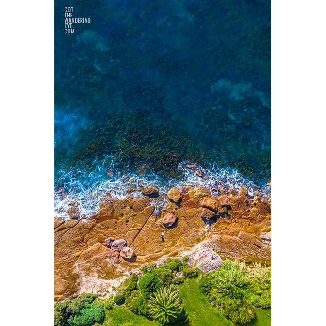 Aerial oceanscape of palm tree and woman standing on rocks in Cronulla