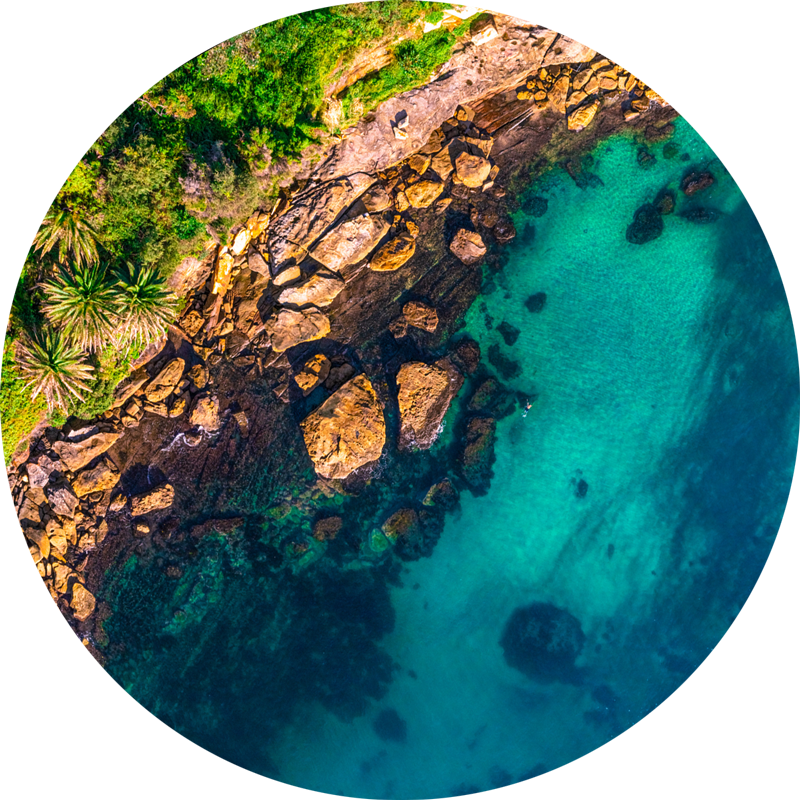 ChromaLuxe round metal prints of Sydneys beaches. Aerial oceanscape above the tranquil calm waters of Gordons Bay. Tropical palm trees as a swimmer enjoys a swim. Wall art delivered and ready to hang.