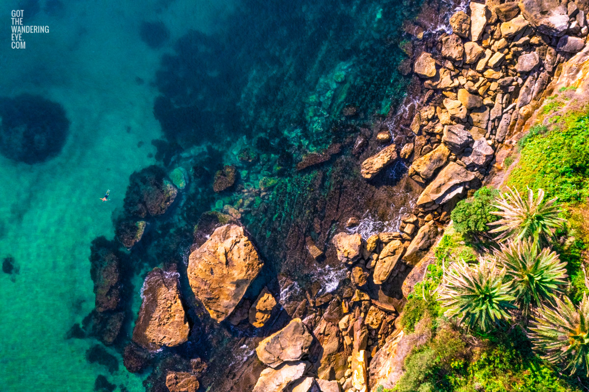 Man Swimming in clear emerald waters of Gordons Bay, surrounded by palm trees and boulders from the clifftop.