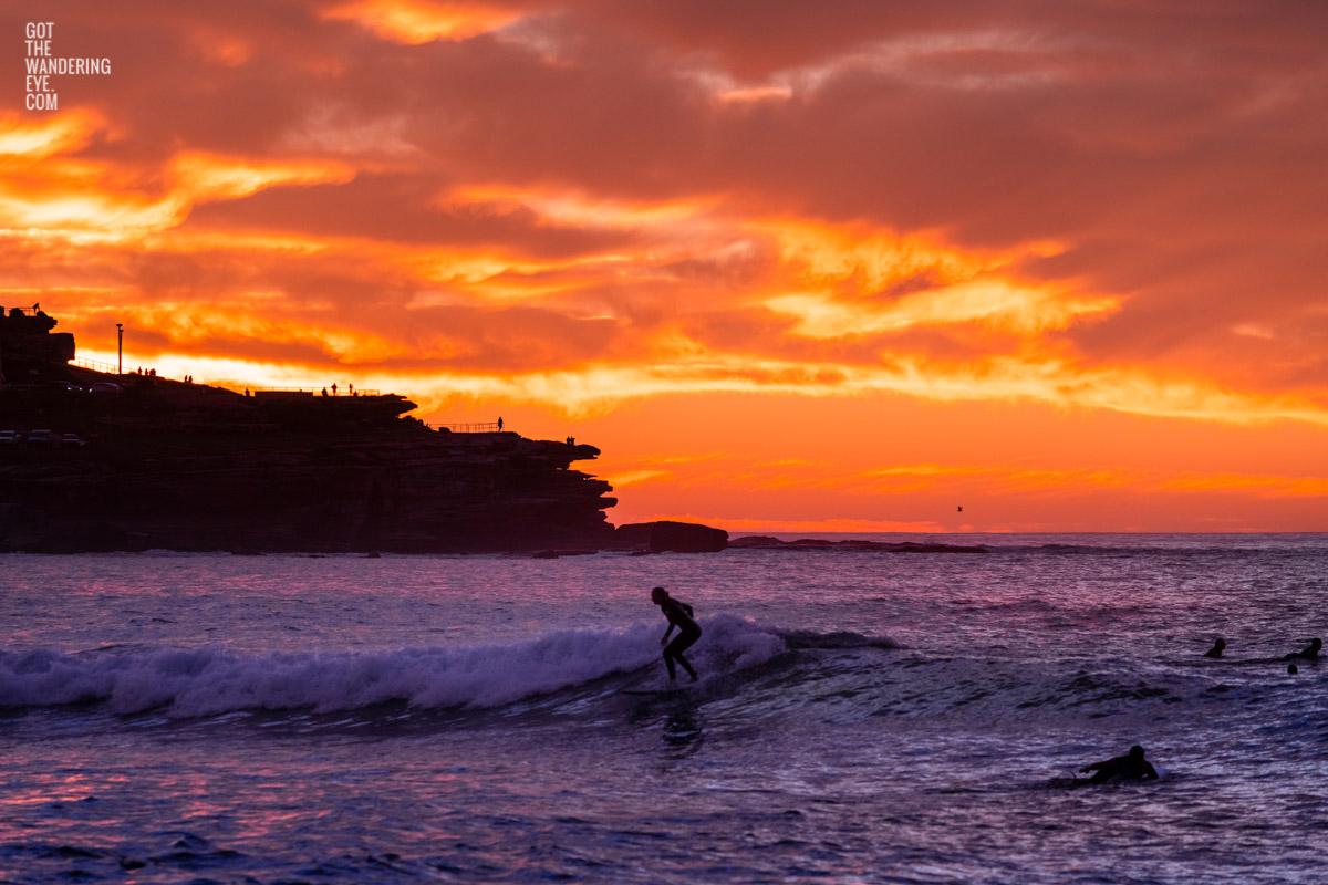 Surfer on a small wave with a scorching fiery sunrise over Ben Buckler at Bondi Beach